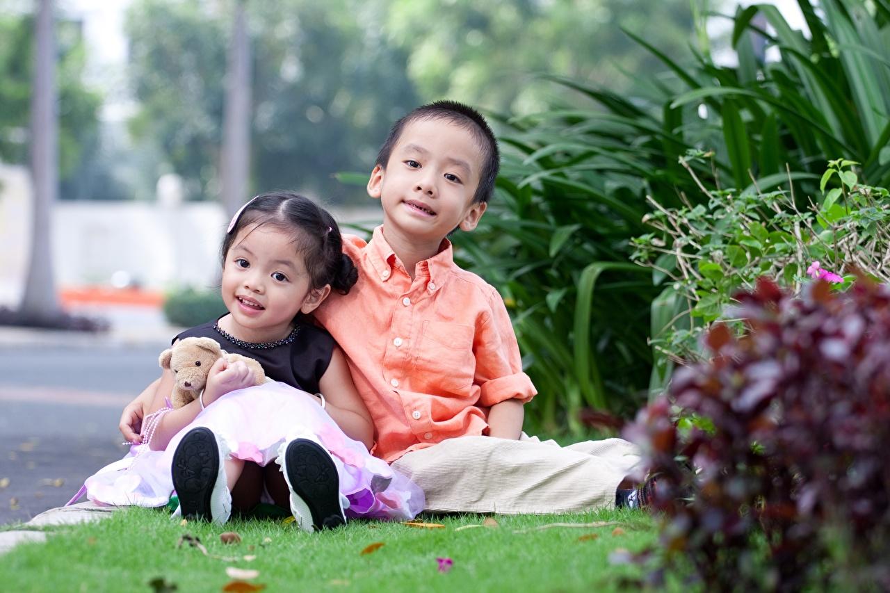 Fotos von Kleine Mädchen jungen Kinder Zwei Asiatische Knuddelbär Gras sitzt Junge 2 Teddy Teddybär sitzen Sitzend