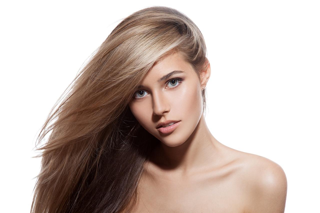 Bilder von Dunkelbraun Blond Mädchen Model Make Up Schön Haar Mädchens Blick Weißer hintergrund Blondine Schminke hübsch schöne hübsche schöner schönes hübscher junge frau junge Frauen Starren