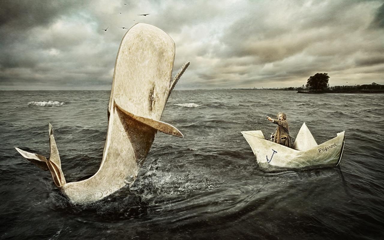 zdjęcia zabawne Wieloryby mężczyzna Morze Łodzie Humor Śmieszne wieloryb Mężczyźni łódź
