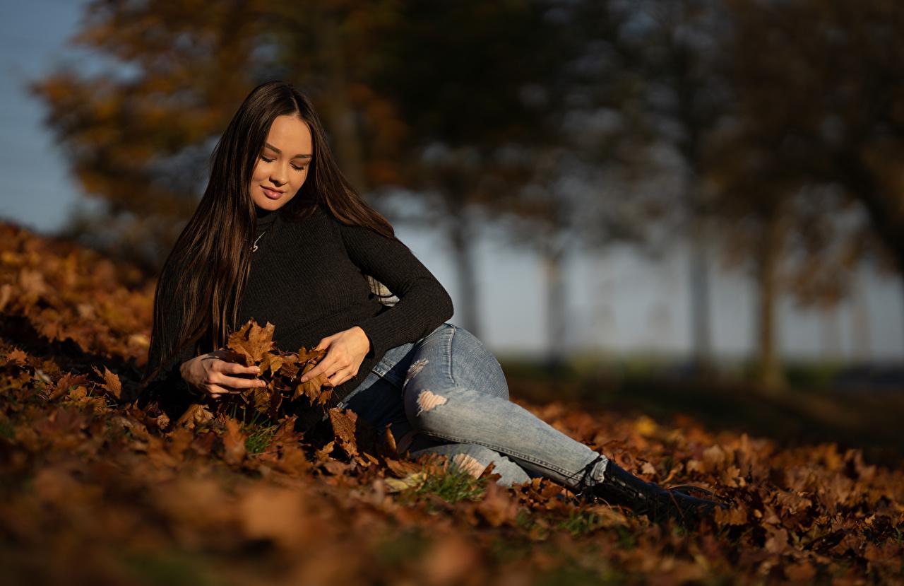 Foto Blatt Brünette ruhen unscharfer Hintergrund Herbst junge frau Jeans Blattwerk Liegt Liegen hinlegen Bokeh Mädchens junge Frauen