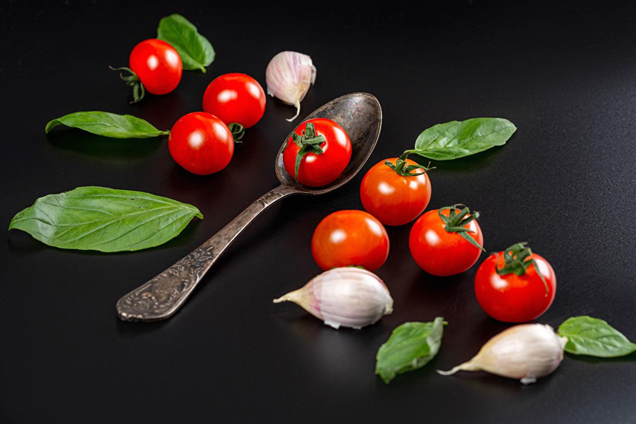 Fotos Blatt Tomate Knoblauch Löffel Lebensmittel Grauer Hintergrund Blattwerk Tomaten das Essen