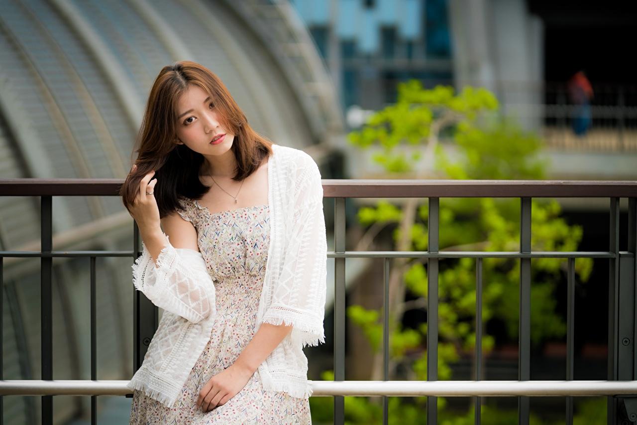 Fotos von Braune Haare unscharfer Hintergrund junge frau Zaun asiatisches Hand Starren Braunhaarige Bokeh Mädchens junge Frauen Asiaten Asiatische Blick