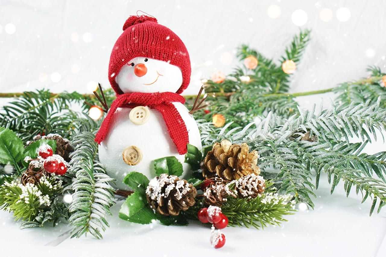 Bilder von Schal Lächeln Mütze Schneemänner Ast Beere Zapfen