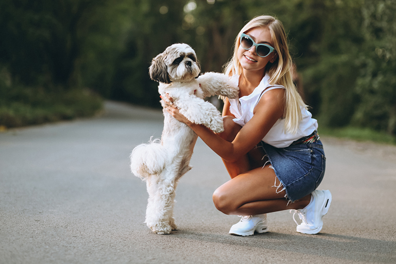 Wallpaper puppies Dogs Blonde girl Bokeh Girls Glasses Glance Animals Puppy dog blurred background female young woman eyeglasses animal Staring