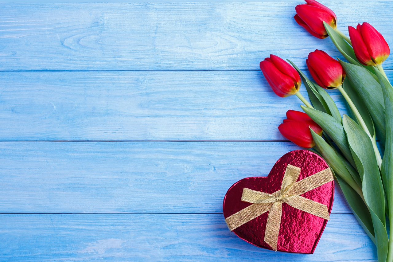 Picture Valentine's Day Heart Tulips Flowers bow Wood planks Bowknot Boards