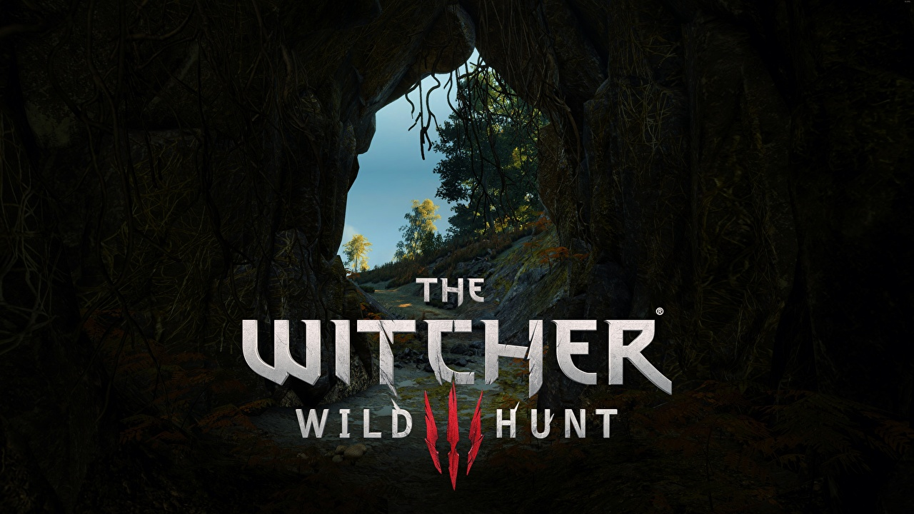 Images The Witcher 3: Wild Hunt Logo Emblem Cave vdeo game caves Games