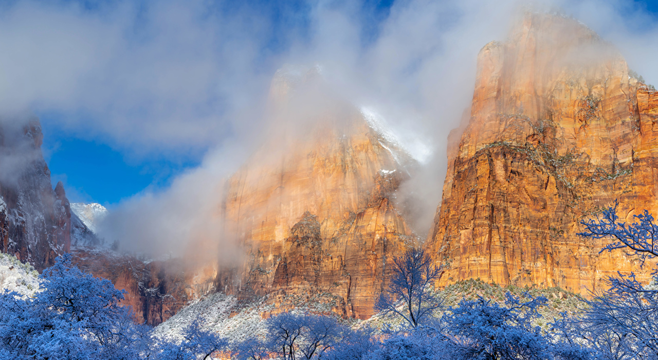 Images Zion National Park USA Rock Nature Winter Mountains Parks Branches Crag Cliff