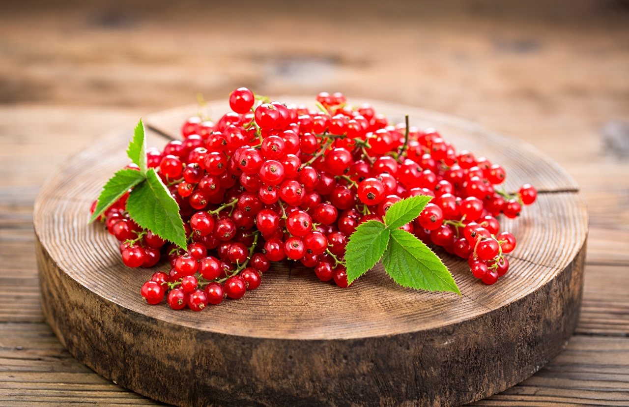 Photo Red Currant Food