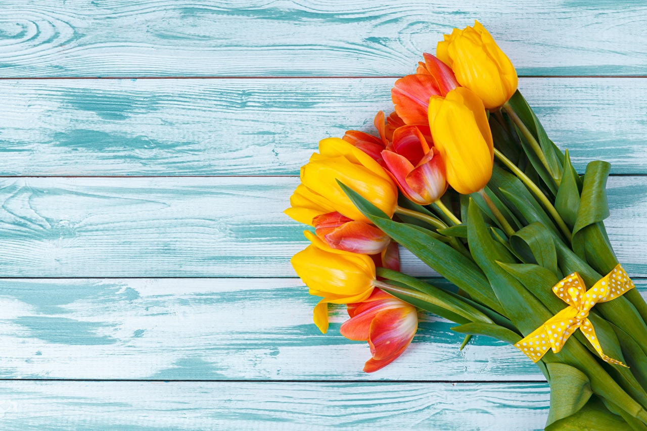 Images Bouquets Tulips flower Template greeting card boards bouquet tulip Flowers Wood planks