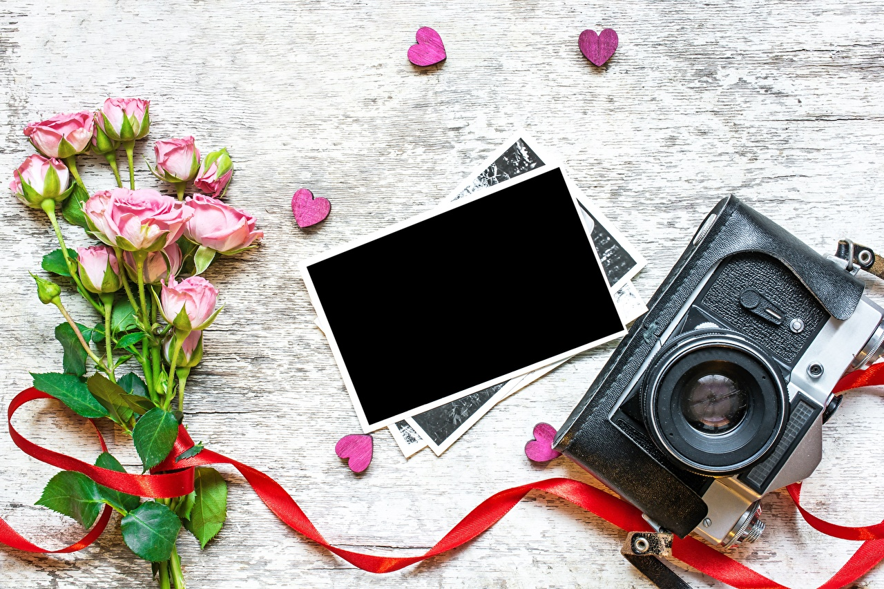 Photo Valentine's Day Camera Heart rose flower Template greeting card Roses Flowers