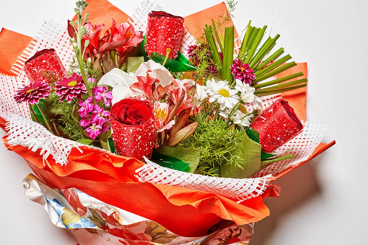 Achtergronden bureaublad boeket Rozen Lelie Dahlia Kamille Bloemen Matthiola Grijze achtergrond Boeketten roos bloem