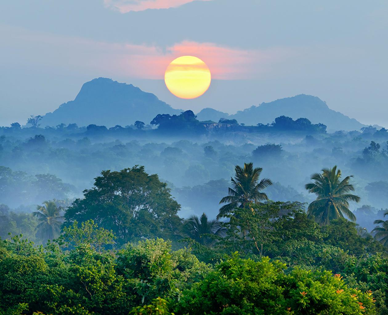 Foto Natura Il Sole Montagne Cielo Foreste Paesaggio alba e tramonto montagna foresta Albe e tramonti