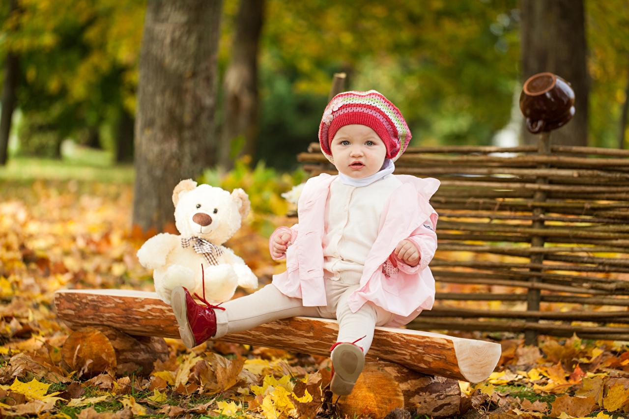 Bilder von Kleine Mädchen Kinder Mütze Herbst Knuddelbär sitzen Starren kind Teddy Teddybär sitzt Sitzend Blick