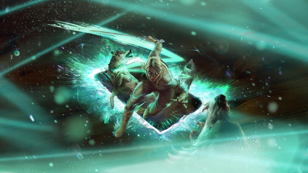 Fotos von junge frau The Witcher 3: Wild Hunt Cirilla Gwent: the witcher card game Spiele Ciri Mädchens junge Frauen computerspiel