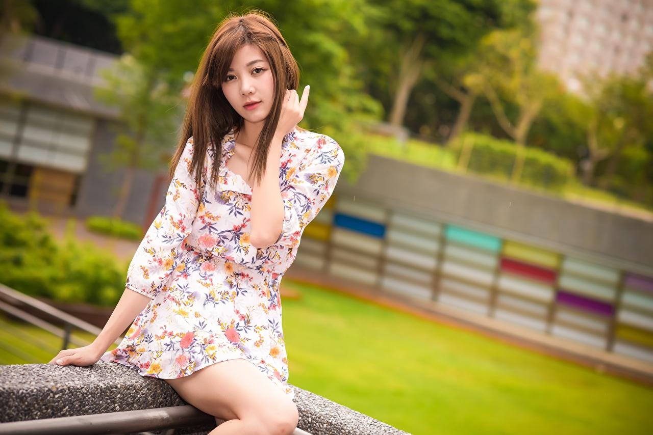 Фотографии шатенки молодые женщины азиатки рука сидящие смотрят платья Шатенка девушка Девушки молодая женщина Азиаты азиатка Руки сидя Сидит Взгляд смотрит Платье