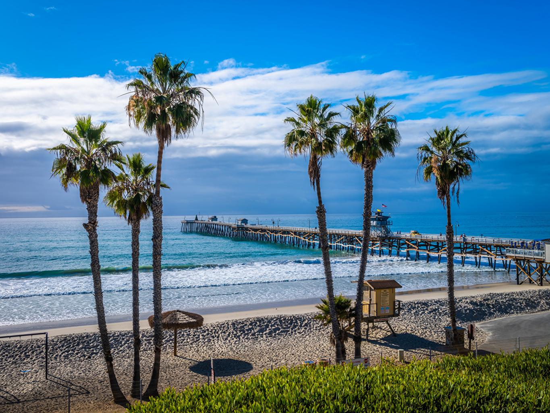 Fotos von Kalifornien USA San Clemente Beach Strand Ozean Natur Palmengewächse Küste Schiffsanleger Vereinigte Staaten Strände Palmen Bootssteg Seebrücke