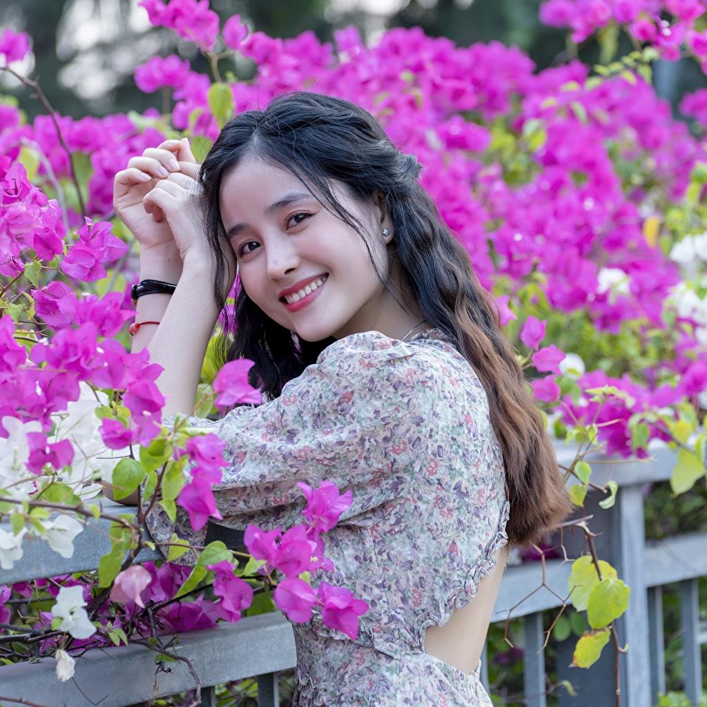 Bilder Lächeln Mädchens asiatisches Hand Blick junge frau junge Frauen Asiaten Asiatische Starren