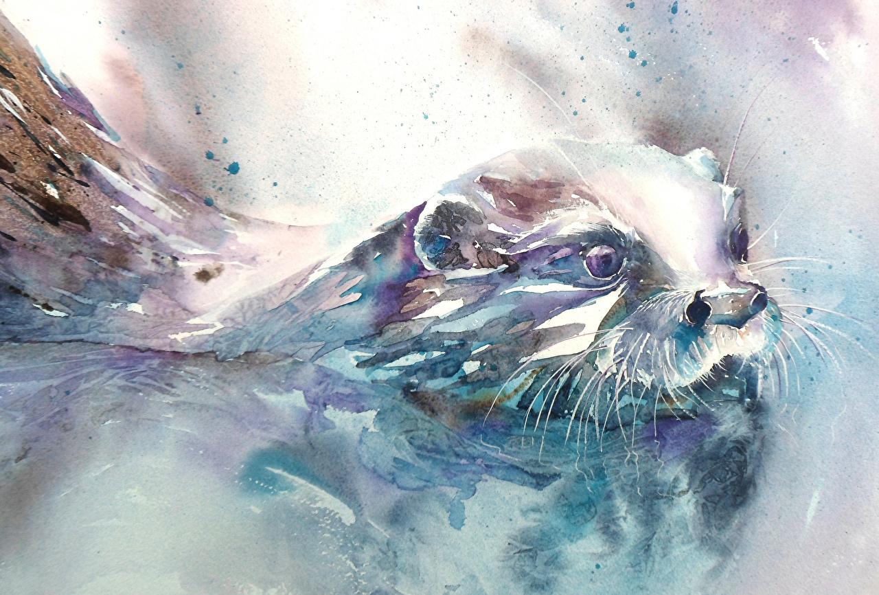 壁紙 描かれた壁紙 絵画 ユーラシアカワウソ 動物 ダウンロード 写真