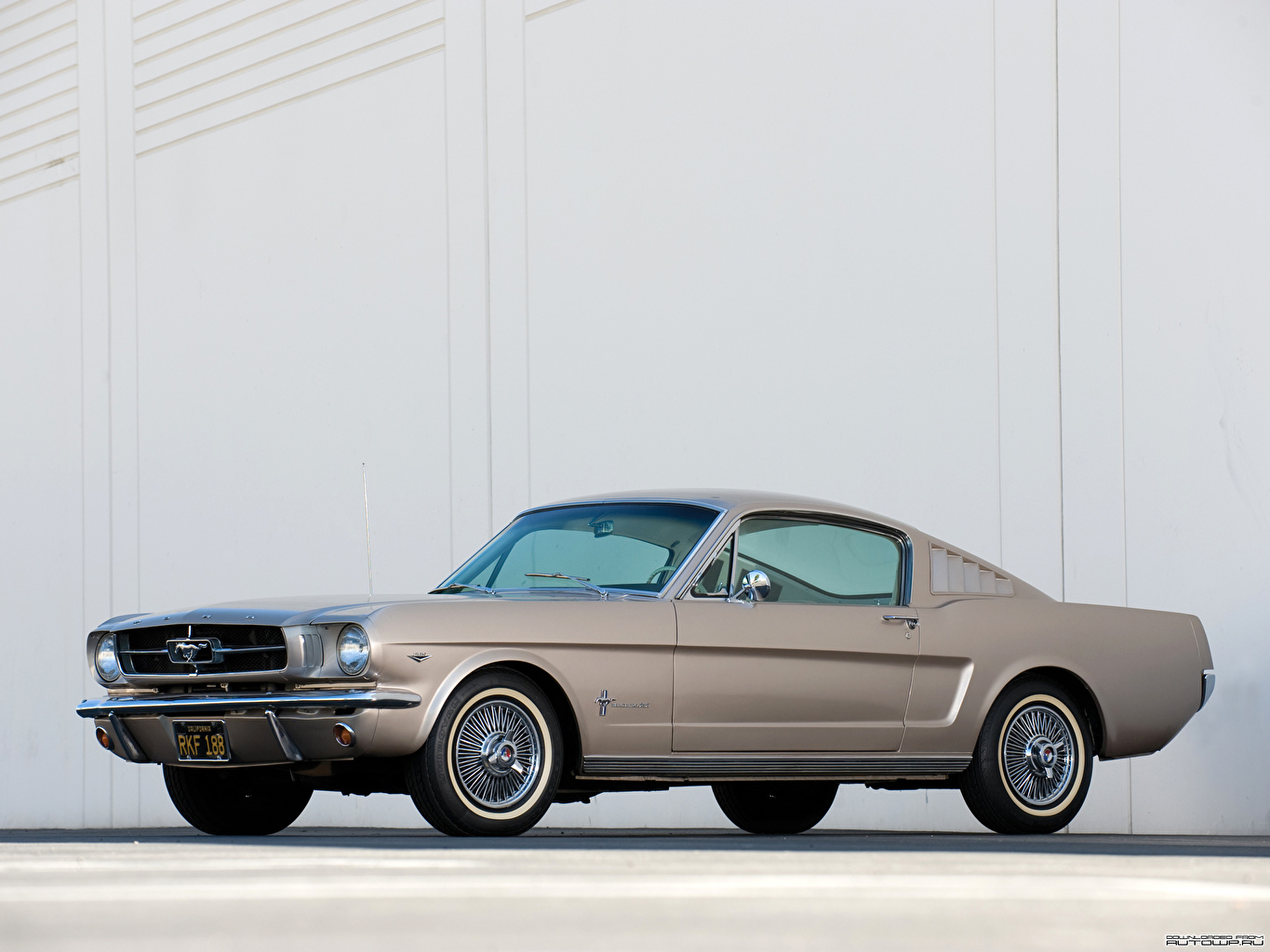 Wallpaper Ford Mustang Fastback 1965 Auto