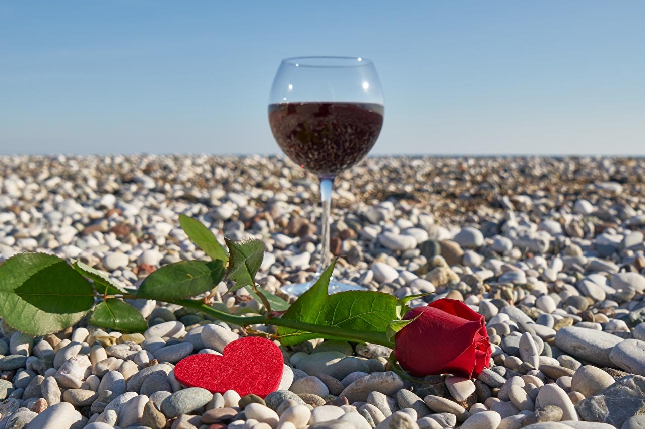 Foto Alla hjärtans dag Hjärta Vin ros Blommor Stenar Vinglas Rosor blomma