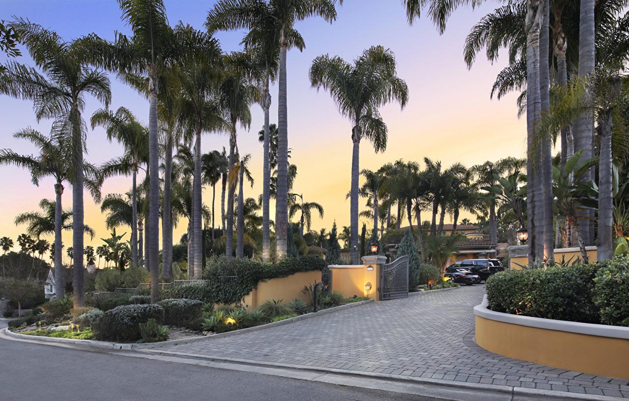 Wallpaper California USA San Juan Capistrano Nature Gate Palms Mansion Shrubs palm trees Bush