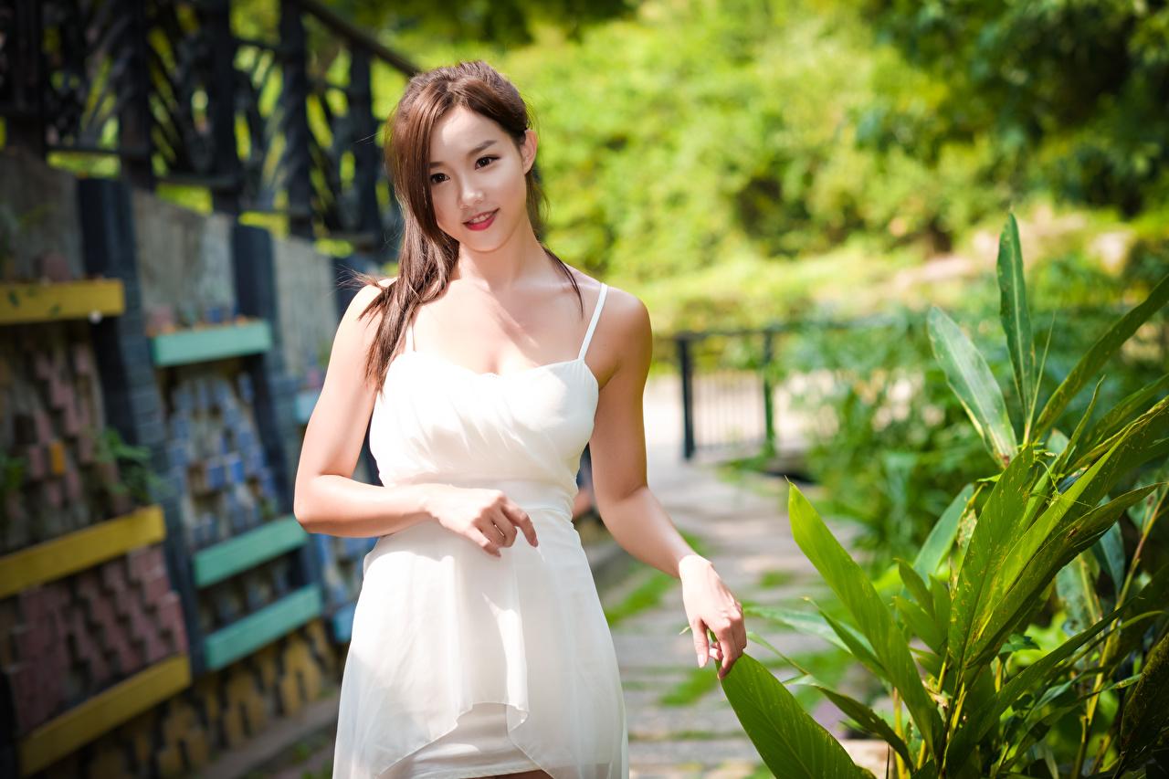 Fotos Braunhaarige Bokeh Mädchens Asiatische Hand Kleid Braune Haare unscharfer Hintergrund junge frau junge Frauen Asiaten asiatisches