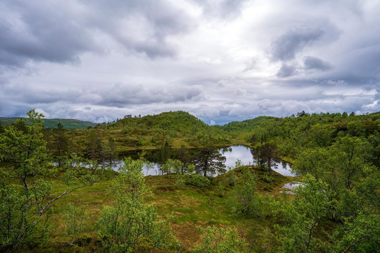 Picture Norway Sjunkhatten National Park Nature Parks Trees Clouds park