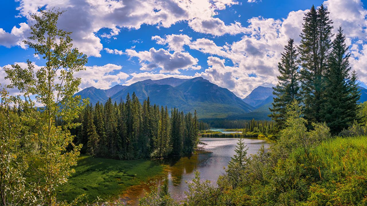 Bilder Banff Kanada Alberta Natur Gebirge Parks Fluss Wolke Bäume Berg Park Flusse