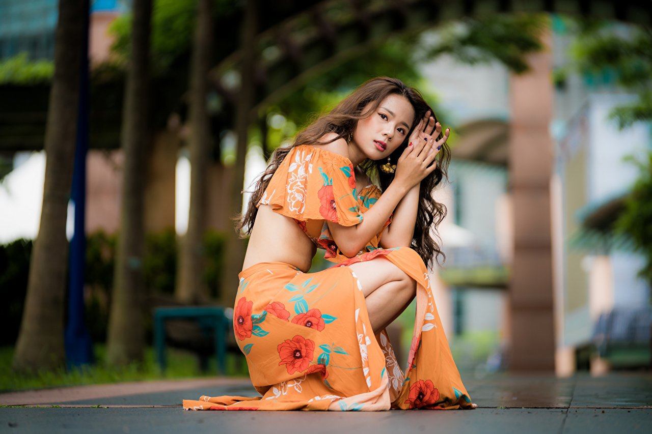 Images Brown haired Bokeh Girls Asiatic Sitting Glance gown blurred background female young woman Asian sit Staring frock Dress