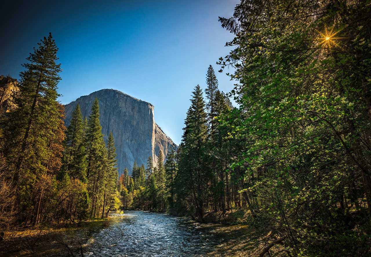 Desktop Wallpapers Yosemite California USA El Capitan Nature Mountains park forest Rivers mountain Parks Forests river