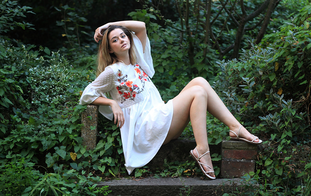 Desktop Hintergrundbilder Lizzy posiert junge frau Bein Sitzend Blick Kleid Pose Mädchens junge Frauen sitzt sitzen Starren