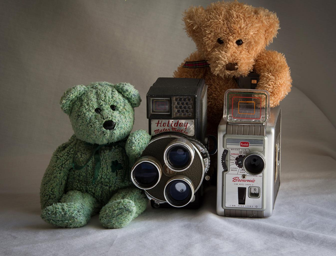 Desktop Hintergrundbilder Fotoapparat Zwei Teddybär 2 Teddy Knuddelbär