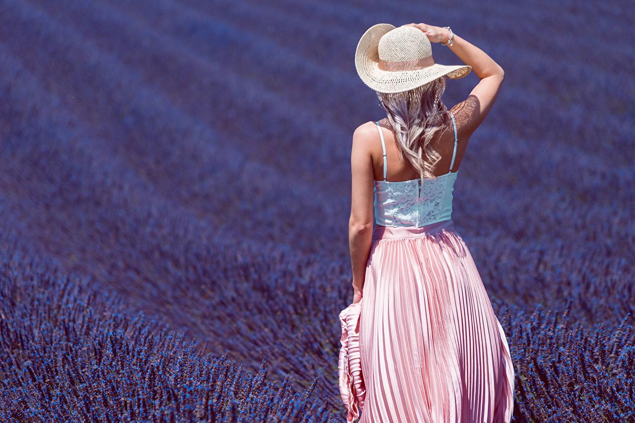 Desktop Hintergrundbilder Blondine Der Hut junge frau Felder Lavendel Hinten Blond Mädchen Mädchens junge Frauen Acker
