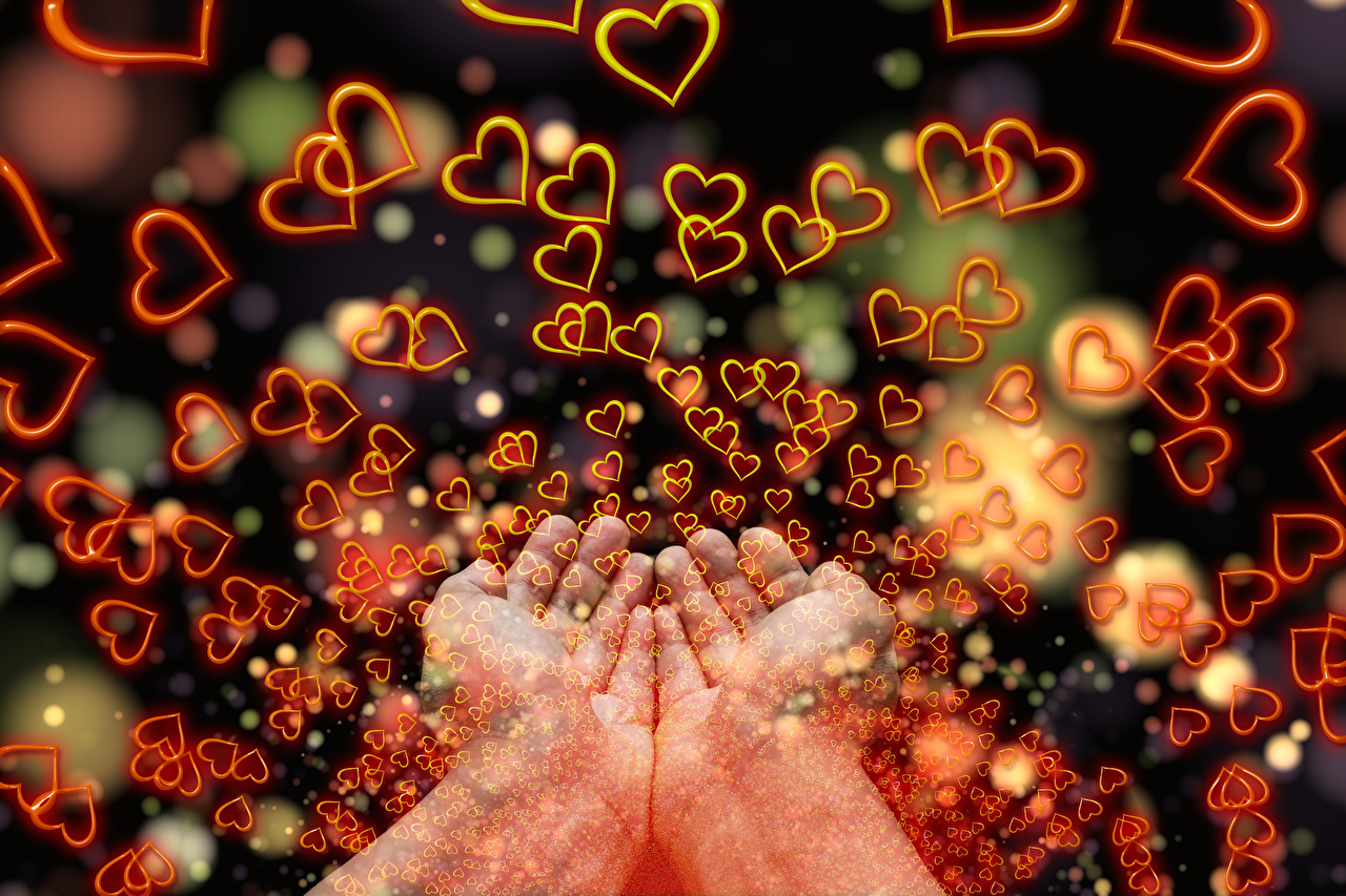 Images Heart Love Hands Many