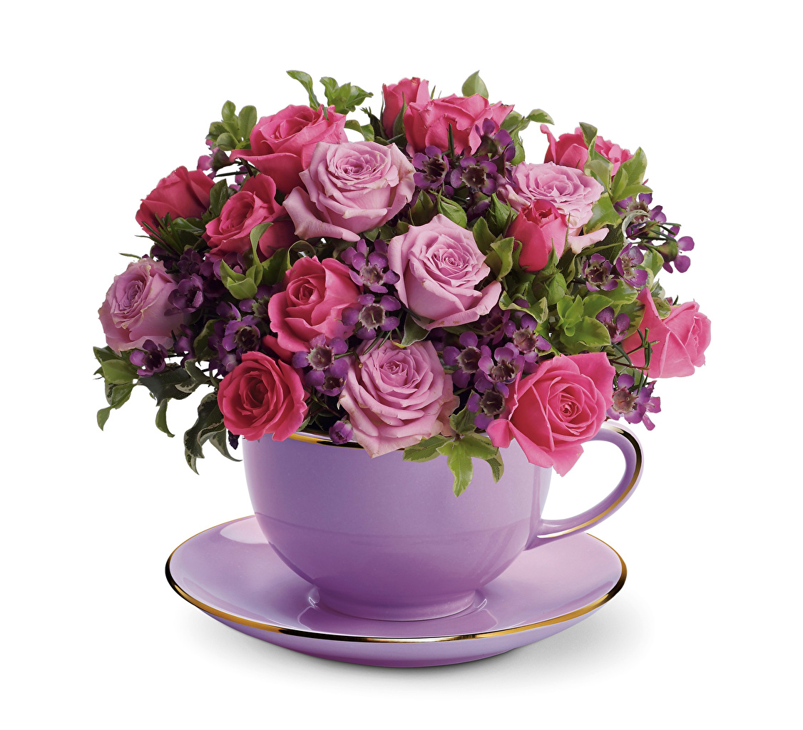 Pictures bouquet Roses flower Cup Saucer White background Bouquets rose Flowers