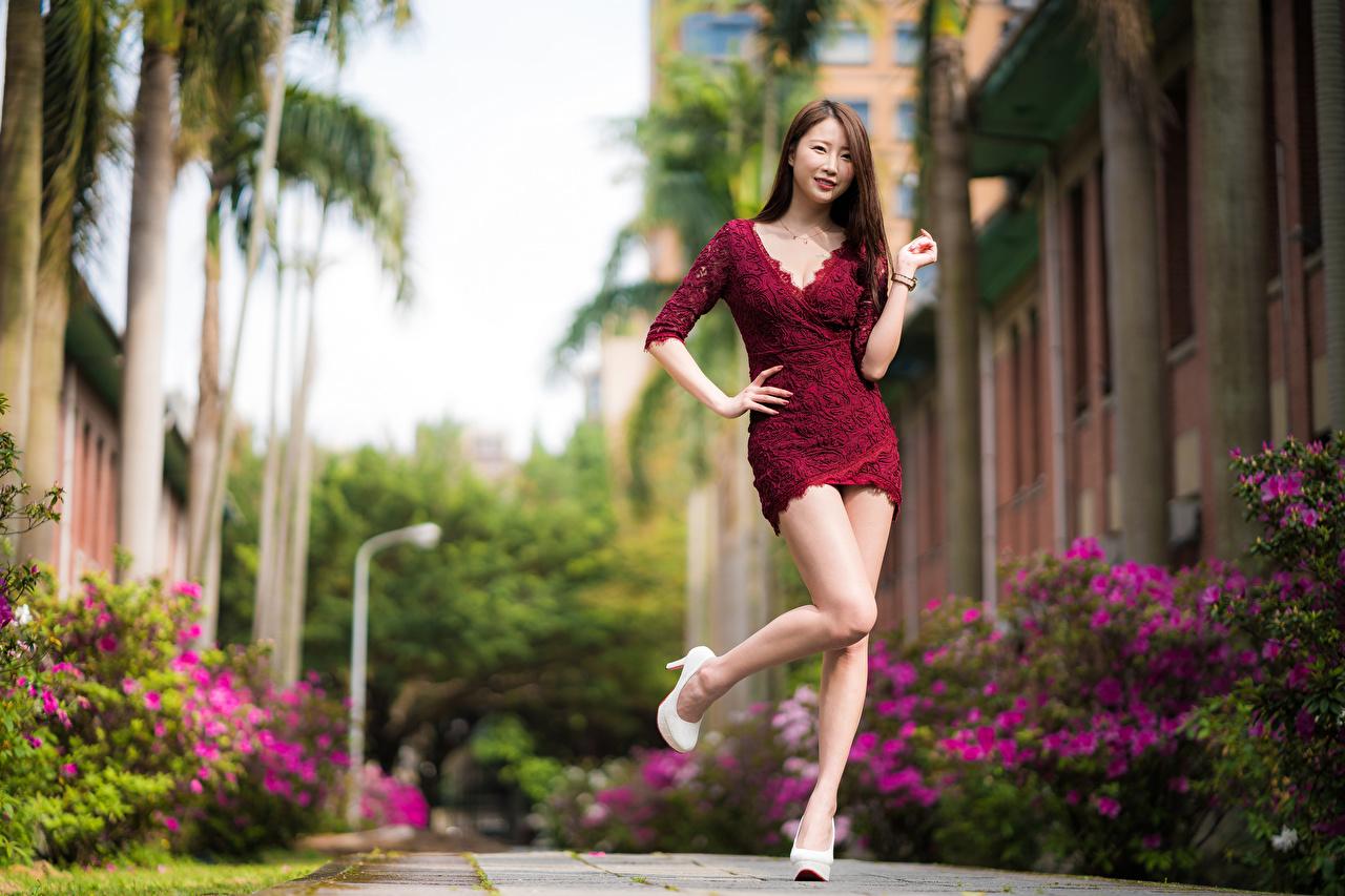 Achtergronden poseren jonge vrouw Benen aziatisch Jurk Pose Jonge vrouwen Aziaten