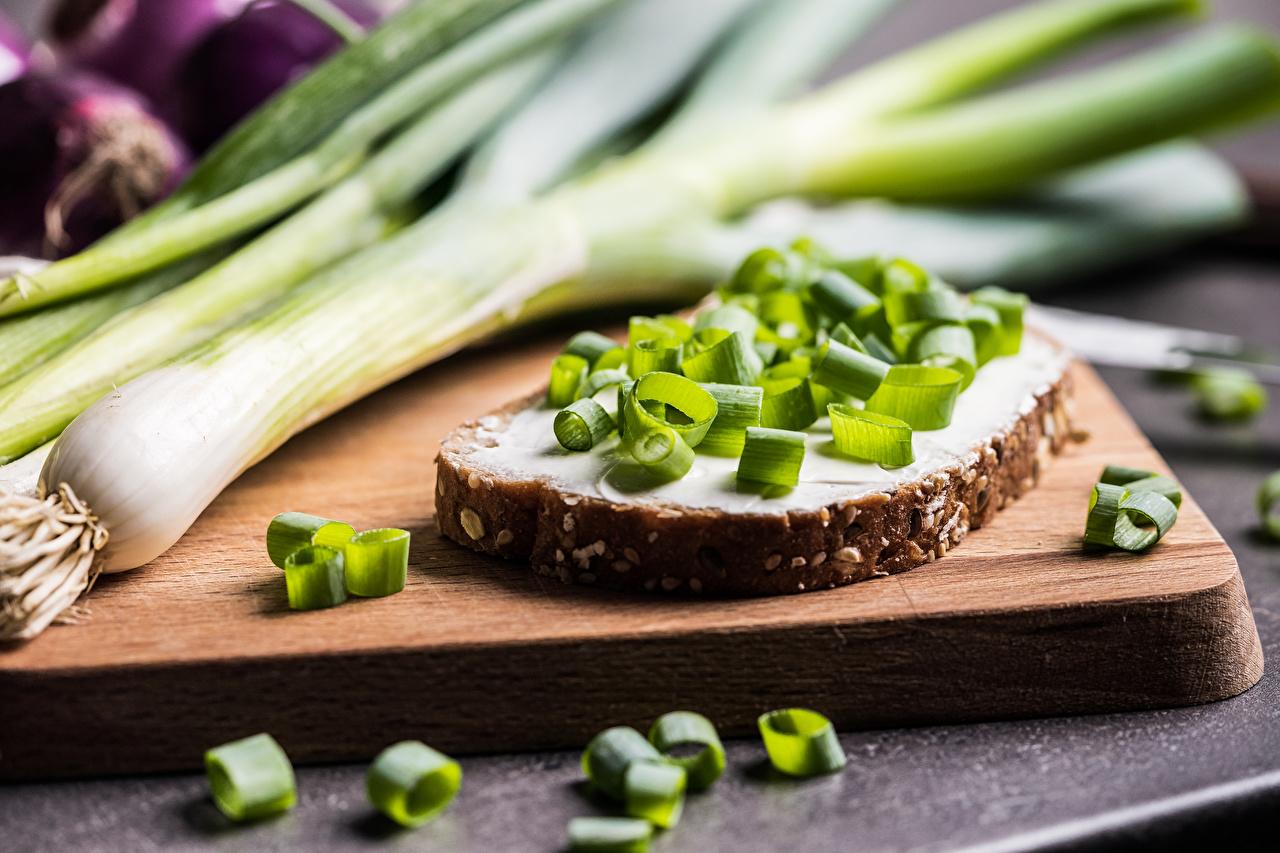 Photo Scallion Bread Butterbrot Food Cutting board salad onions