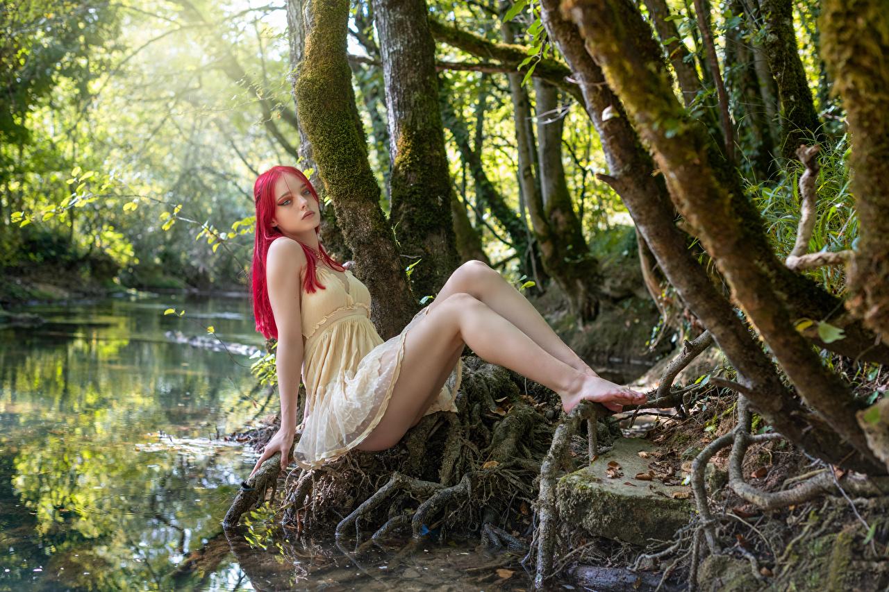 Fotos Lana posiert junge Frauen Bein Sitzend Bäume Kleid Pose Mädchens junge frau sitzt sitzen