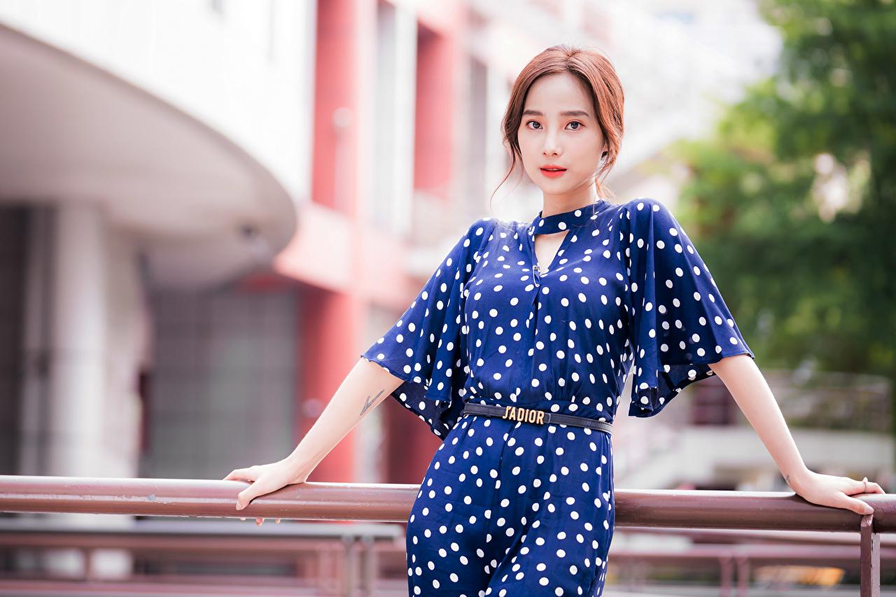 Bilder von unscharfer Hintergrund junge Frauen asiatisches Starren Kleid Bokeh Mädchens junge frau Asiaten Asiatische Blick
