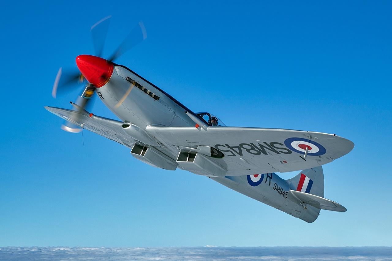 Bilder Jagdflugzeug Flugzeuge Supermarine Spitfire FR XVIII Himmel Flug Luftfahrt