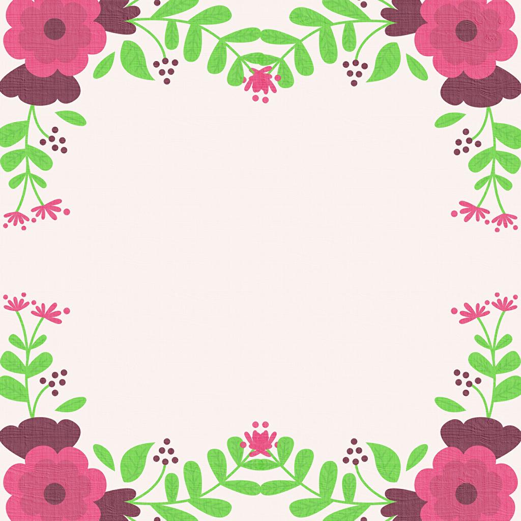Bilder Blüte Ast Vorlage Grußkarte Gezeichnet Blumen