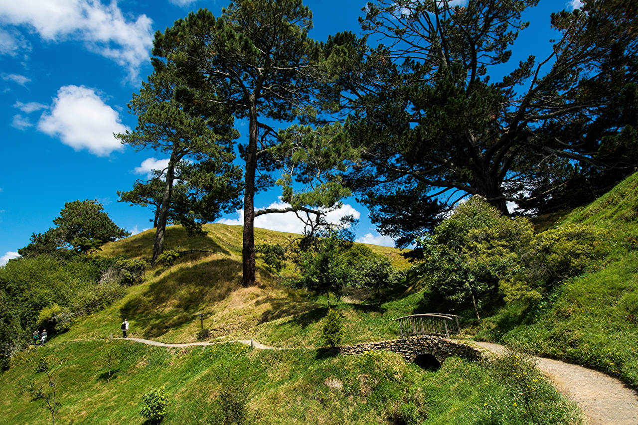 Pictures New Zealand Matamata Hobbiton bridge Nature Roads Grass Trees Bridges