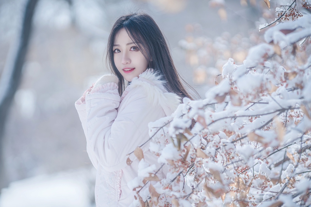 Images Brunette girl blurred background Girls Winter Snow Asian Branches Glance Bokeh female young woman Asiatic Staring