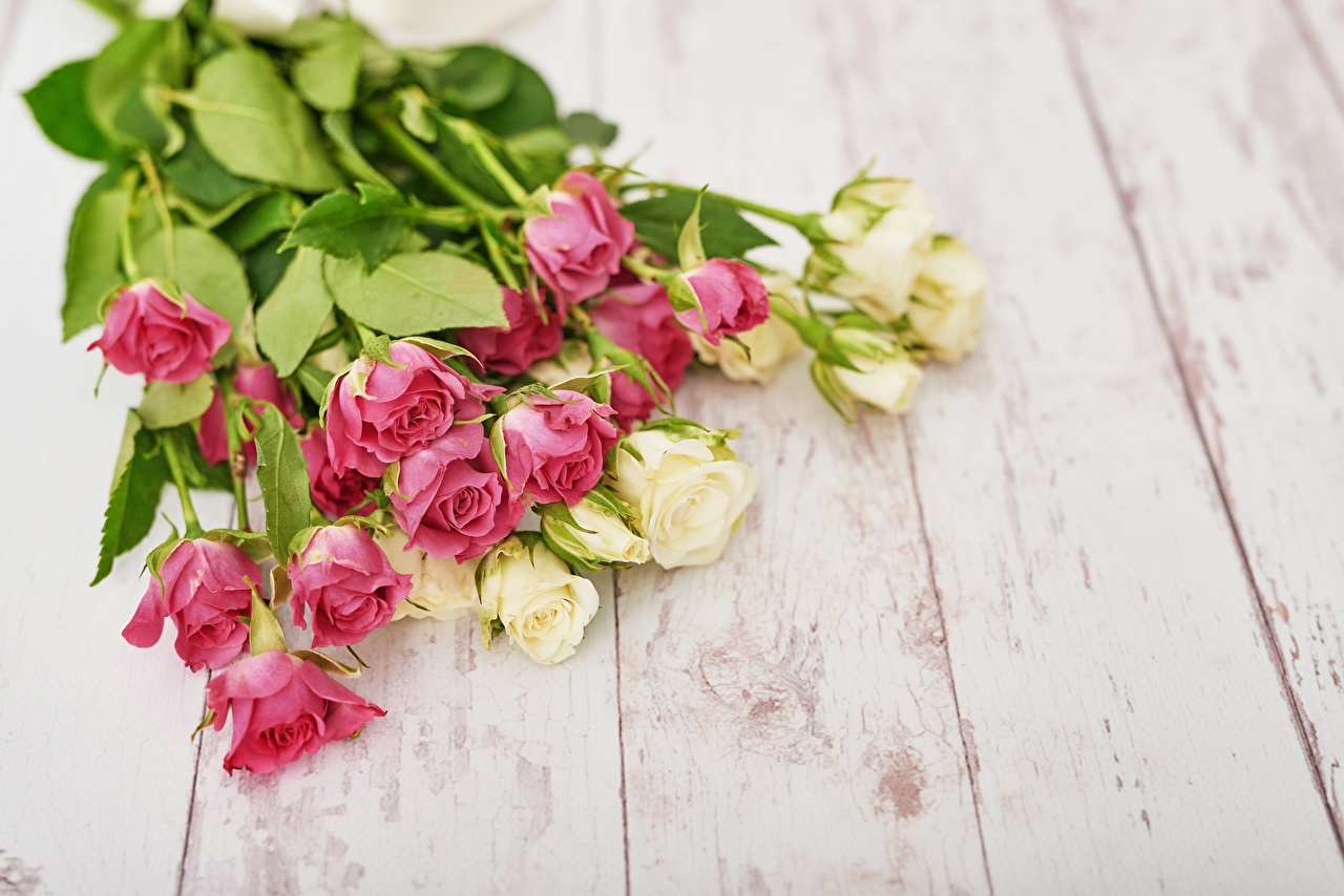 Desktop Wallpapers bouquet Roses flower Wood planks Bouquets rose Flowers boards