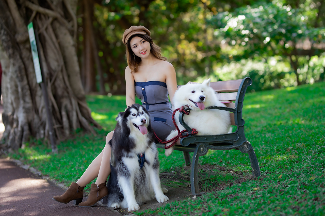 Image dog Beret Girls Asian sit Bench Animals frock Dogs female young woman Asiatic Sitting animal gown Dress