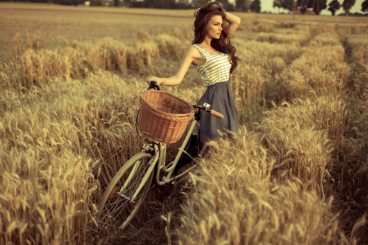 Photo Brown haired Pose Bicycle Girls Fields Wicker basket Hands posing bike bicycles female young woman