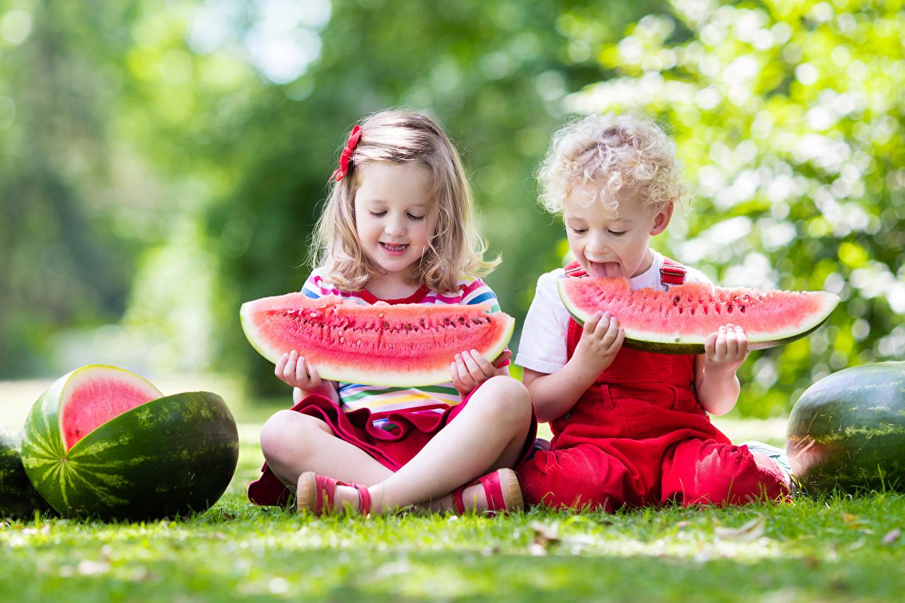 Bilder Kleine Mädchen jungen Kinder 2 Wassermelonen sitzen Junge kind Zwei sitzt Sitzend