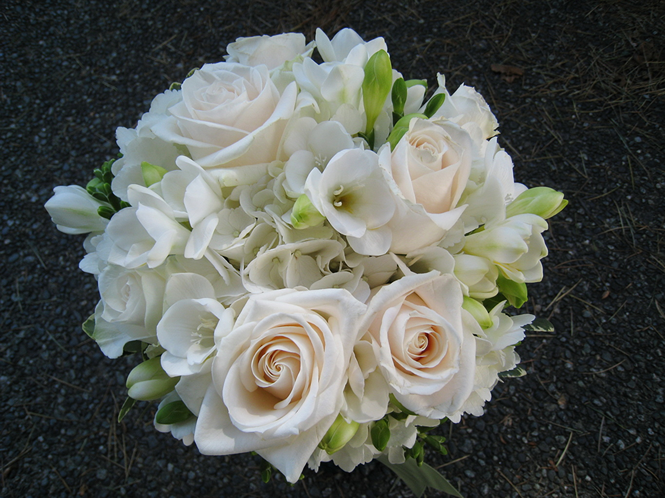 Image bouquet rose White flower Bouquets Roses Flowers