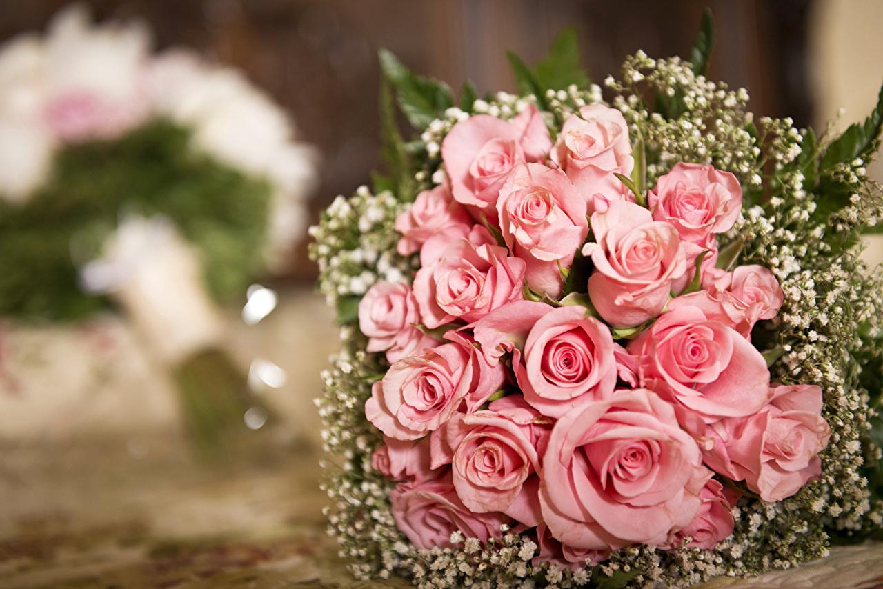 Fonds d'ecran Bouquets Roses Rose couleur Fleurs télécharger photo