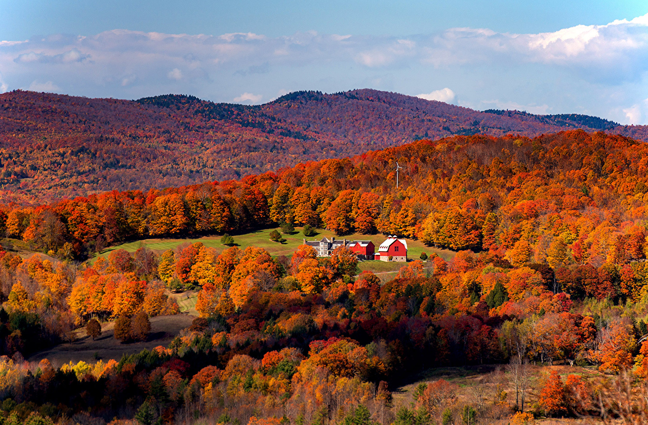 Photos USA South Woodstock Vermont Autumn Nature Hill forest Forests